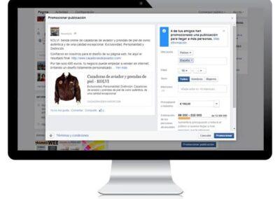 Campaña en Facebook