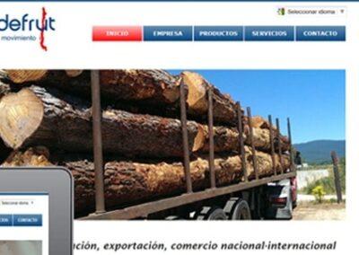 Diseño web en Chile