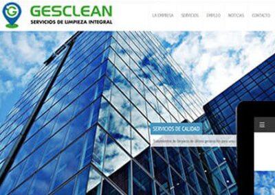 Elaboración web de limpieza